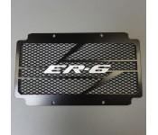 Grille radiateur ER6 RS avec grille anti