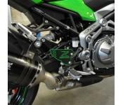 Platines repose pied carbone vert Z900